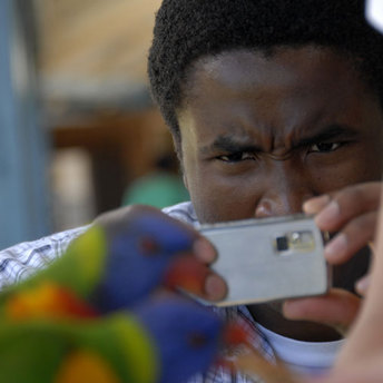 An attendee of the Community Prophets workshop taking a photo of a Rosella.